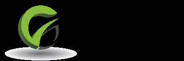 DG Auction Services Logo